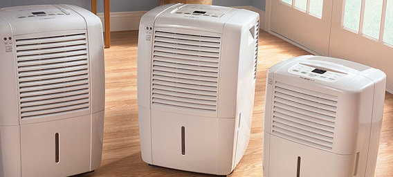 Dehumidifiers for Home Use